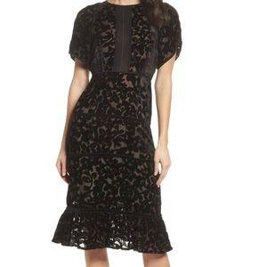 Anthropologie Foxiedox Black Velvet Dress NWT